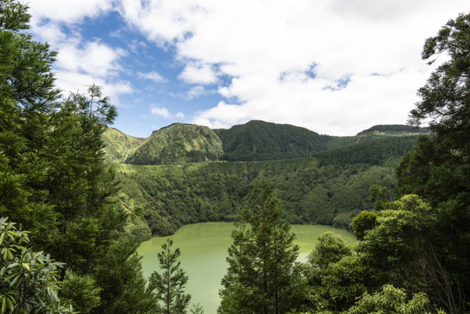Azores - Copyright Martin Kaufmann