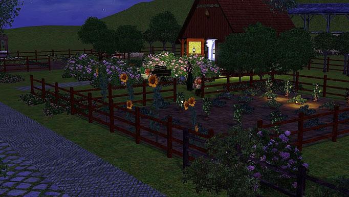 Obstgarten mit Aboretum