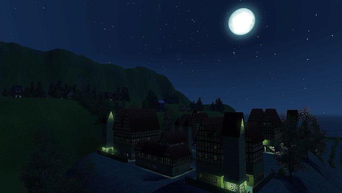 Altstadt bei Vollmond