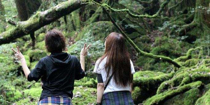 もののけの森で心弾む