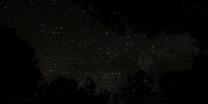 夜空の星空を見上げる