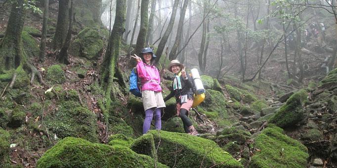白谷雲水峡から縄文杉へ