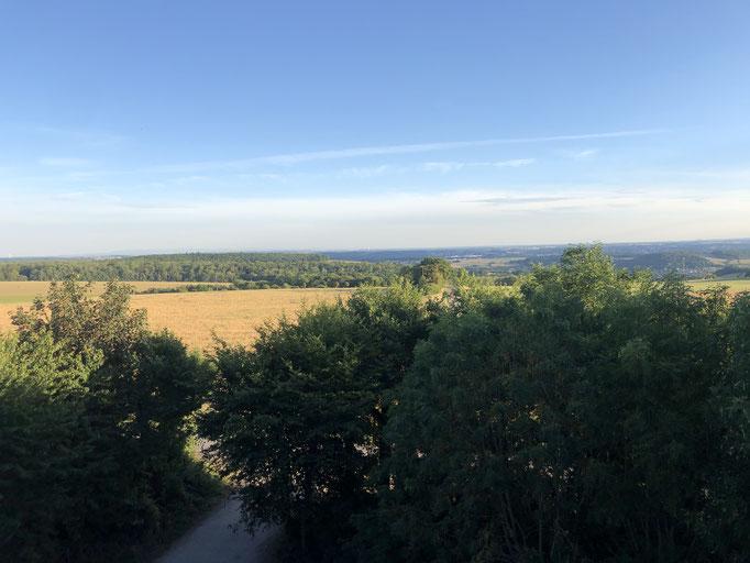Aussichtspunkt Heidenkopf im Mandelbachtal