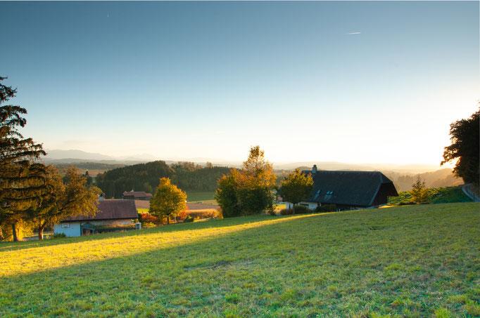 Natur und Ruhe Einfamilienhaus Mühleberg Rosshäusern