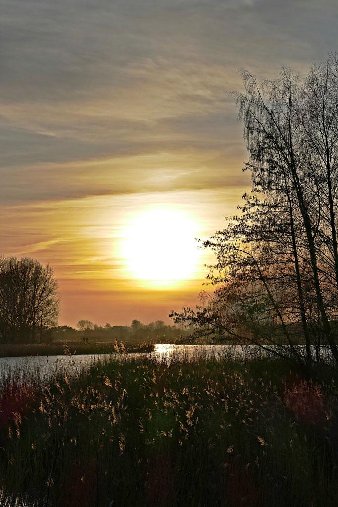 Sonnenuntergang am Achterwasser