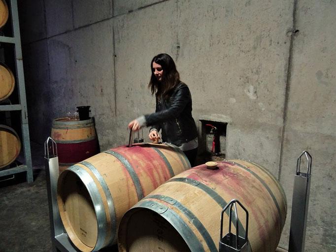 Hier degustieren wir den Unterschied - Wein gelagert in amerikanischer und französischer Eiche