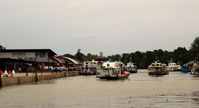 Río Paraná in Tigre