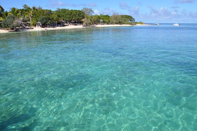 les eaux limpides du phare Amédee