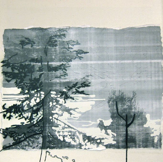 "Drawing""The woods""/270×270mm/綿布にインクジェットプリント、油性ペン、修正液、ボールペン/2013/撮影:怡土鉄夫"