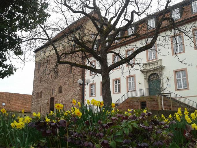 Schleglerkasten und Graevenitz'sches Schloss in Heimsheim
