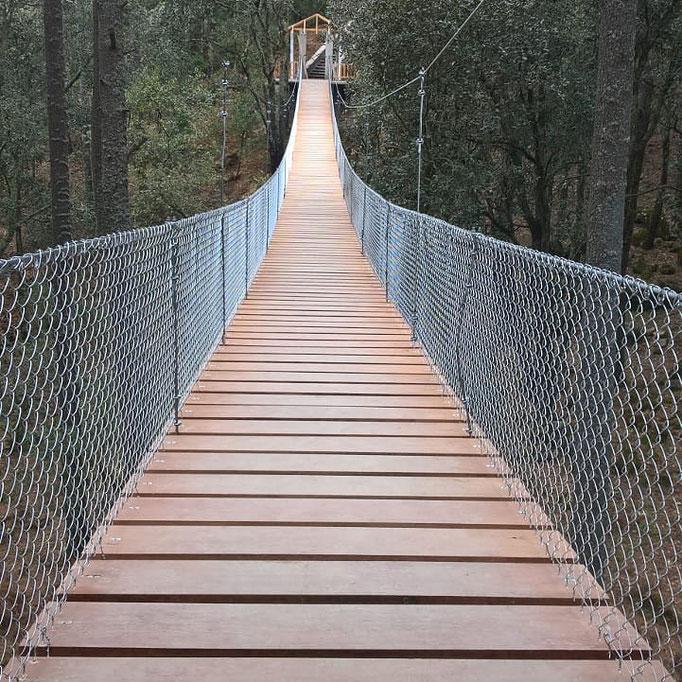 Diseño y construccion de Puentes colgantes