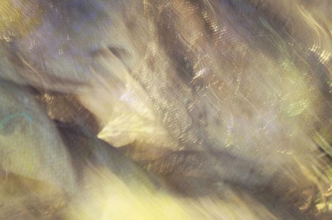 Tissus, photographie numérique, 2017