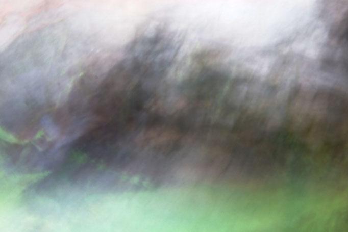 Dans la peau d'un arbre, photographie numérique, 2017