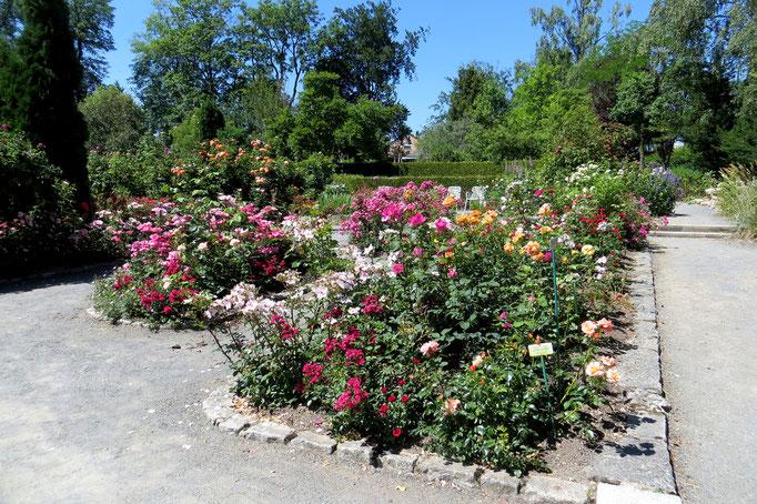der botanische Garten Hof