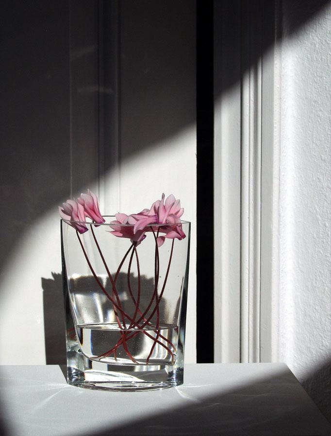 Sonntags, nachmittags, mit Veilchen   2005 | 28 x 37 cm