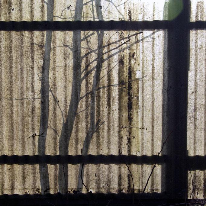 nachmittags in der Gartenkolonie II   2005 | 28 x 28 cm