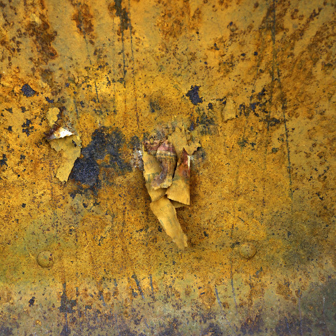 Aud dem Boden der Schubkarre   2014 | 28 x 28 cm