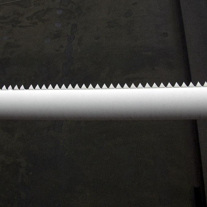 wehrhafter Wächter   2004 | 28 x 28 cm