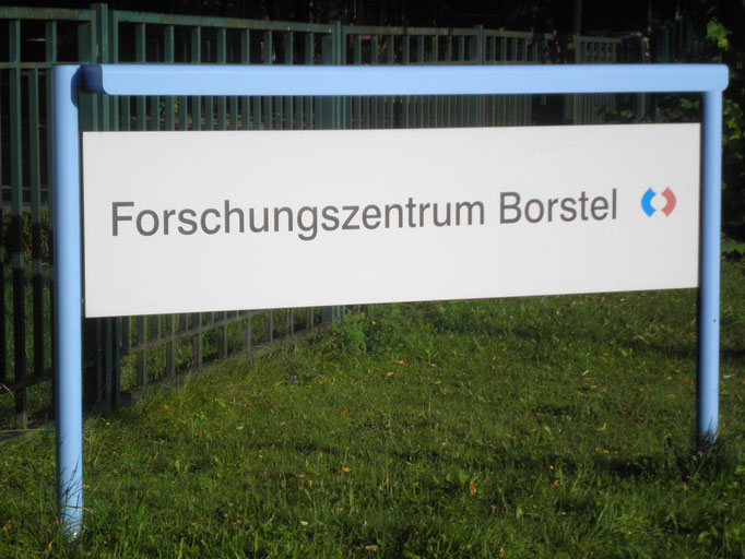 Bodenbeschichtung Forschungszentrum Borstel Sicherheitsbereich