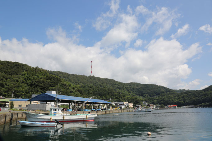 愛媛県愛南町 久良港