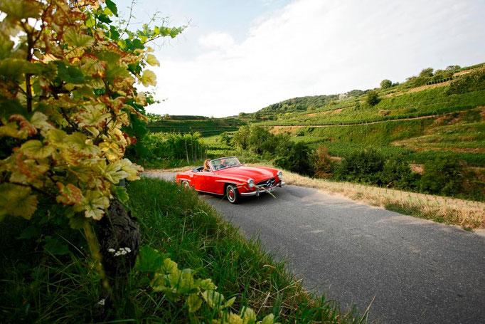 Badische Weinstraße: Fahrt durch die Weinberge © TMBW Düpper