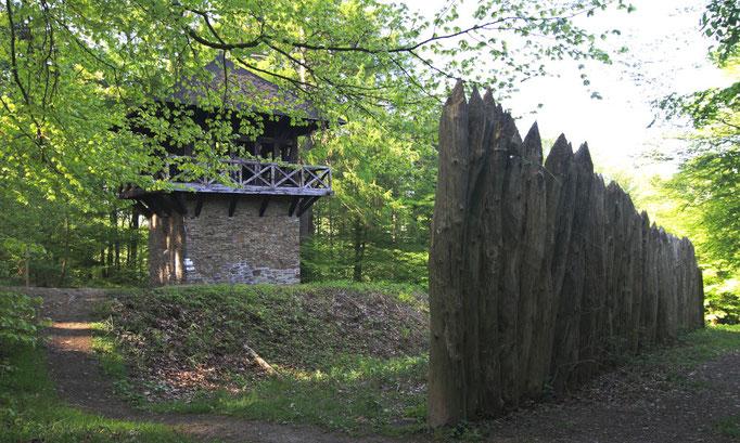 Kastell Zugmantel (Copyright: Verein Deutsche Limes-Straße, Schneidt)