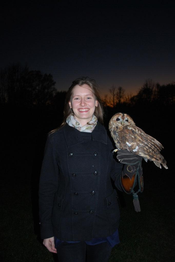 Waldkauz Dame Wieed, welche nach der Heilung ihres gebrochenen Flügels wieder ausgewildert werden konnte (Oktober 2015)