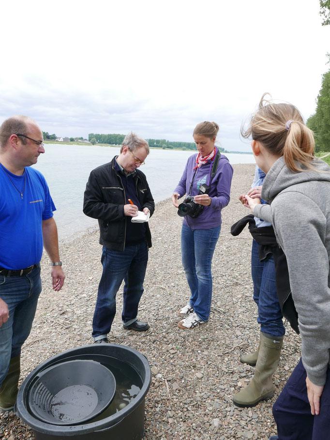 Auch die Presse ist SEHR interessiert und will wissen ob es wirklich Gold im Rhein bei Hitdorf gibt.