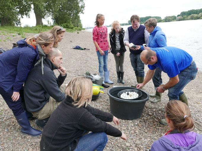 Joachim Best erklärt sehr anschaulich wie das Gold aus dem Kiesgeröll und Sand gewaschen wird.