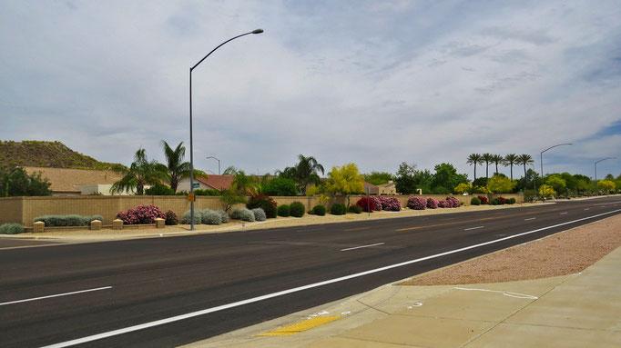 überall in den Vororten von Phoenix gibt es so viele Pflanzen an den Strassen... an Strassen mit Geschäften hingen dann zB auch Blumenkübel an den Laternen / lovely streets everywhere in the Phoenix area