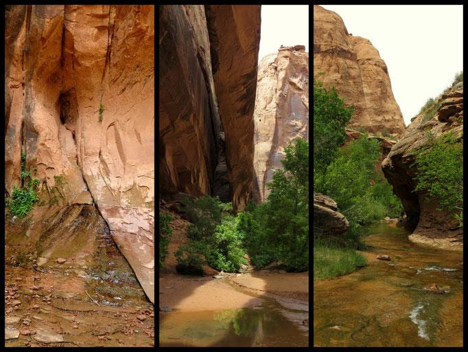links zu sehen die Quelle die den Fluss speist, das Wasser kommt einfach aus dem Berg gesprudelt