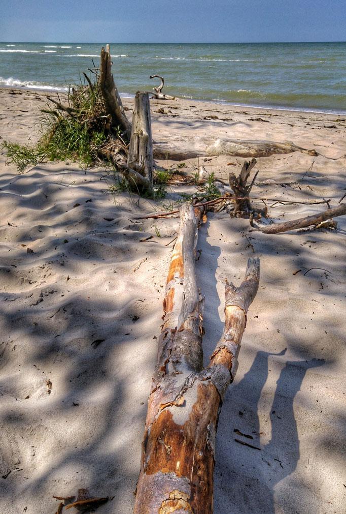 Meer und Strand in Zingst