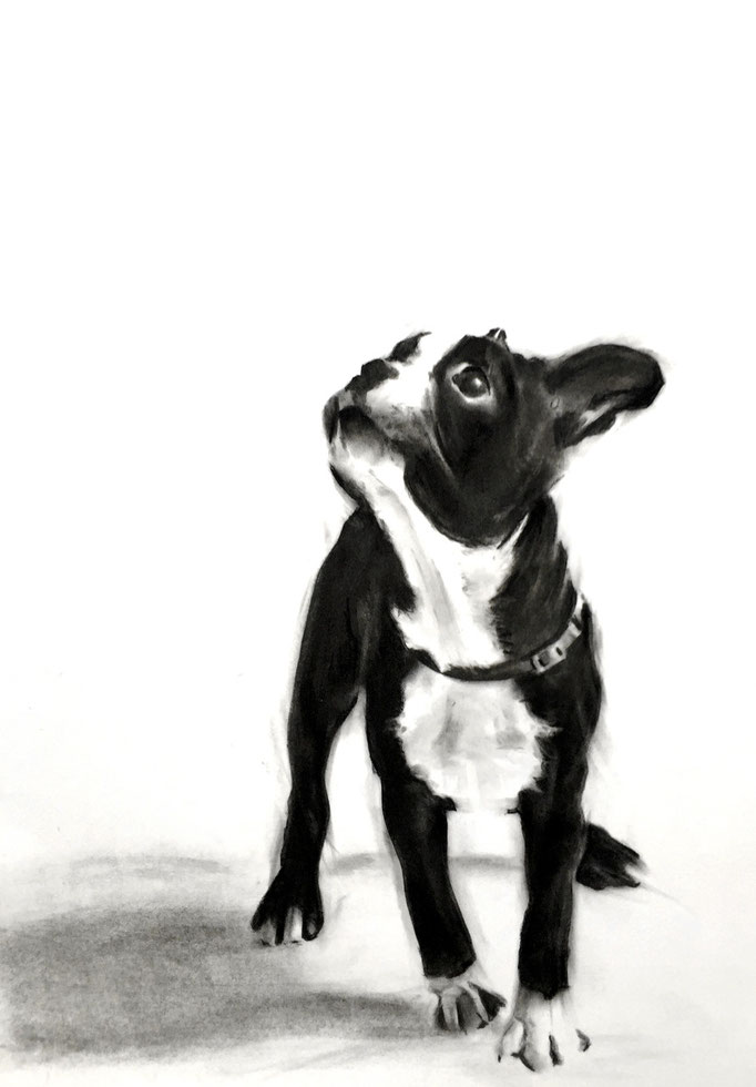 Doggy Style | 42 x 59 cm | Sold