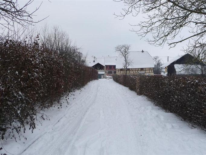Le Landenweg en hiver (2010)