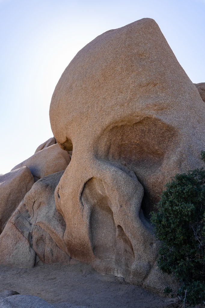 Joshua Tree National Park, Skull Rock