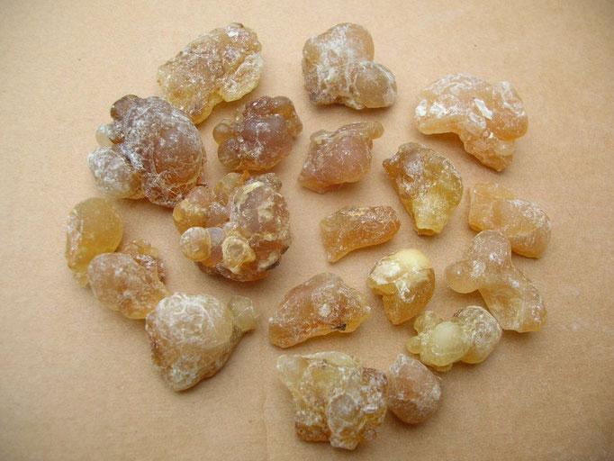 "Boswellia sacra OMAN - (AL) HOJARI - Farbsortierung ""bernsteinfarbig / amber"""