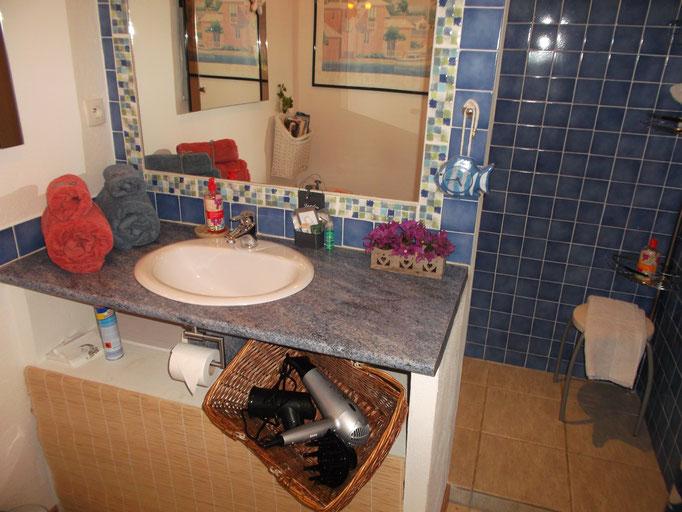 salle de bains avec sèche-cheveux