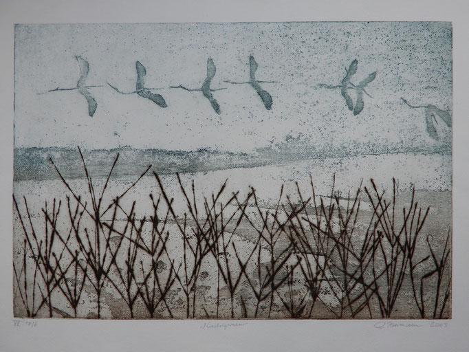 """Gunter Herrmann: """"Niedrigwasser"""", Farbradierung, 2003 (Ausschnitt)"""