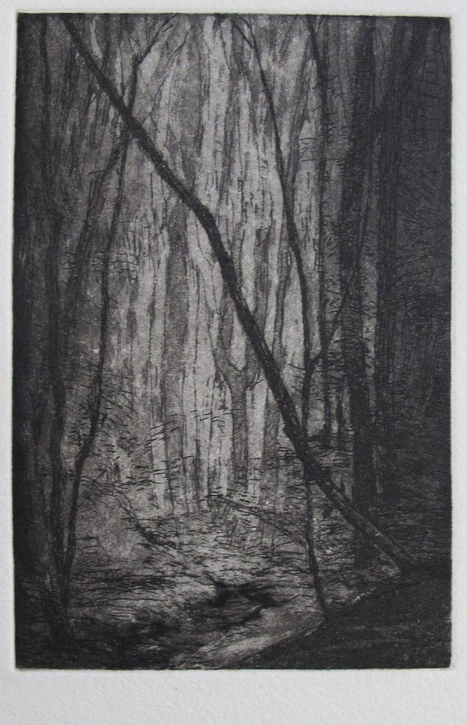 Doreen Papperitz: Waldlicht, Radierung, 2019