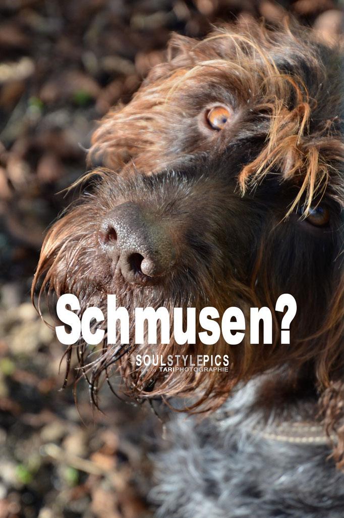 Schmusen?