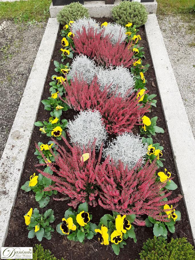 Pflegeleichte Grabbepflanzung im Herbst zum Selbermachen.