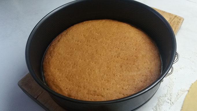 Gedeckter Apfelkuchen Rezept Schritt für Schritt Anleitung