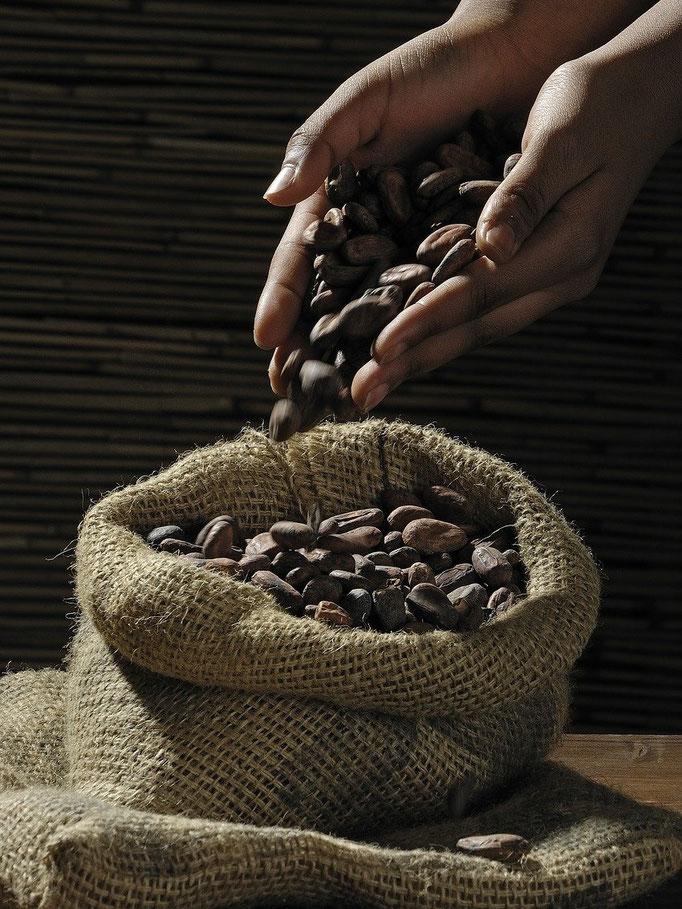 Kakaobohnen nach dem Trocknen und Fermentieren