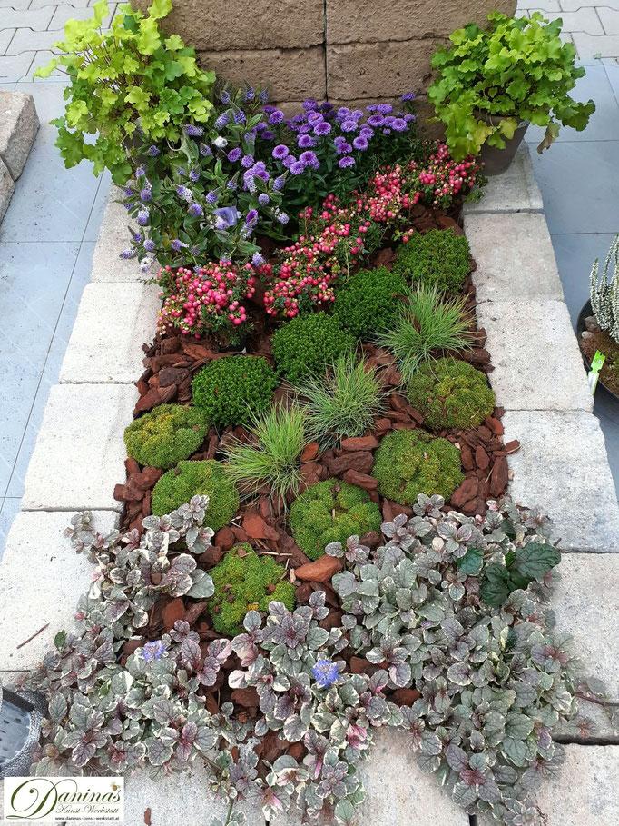 Grabgestaltung und Grabbepflanzung im Herbst pflegeleicht. Beispiel zum Selbermachen.