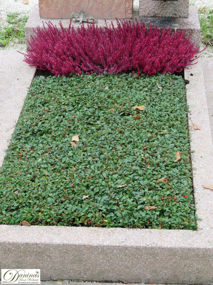 Einfache Grabbepflanzung im Herbst pflegeleicht. Idee zum Selbermachen.