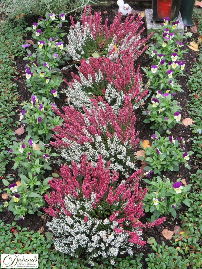 Beispiel für Grabbepflanzung im Herbst pflegeleicht.
