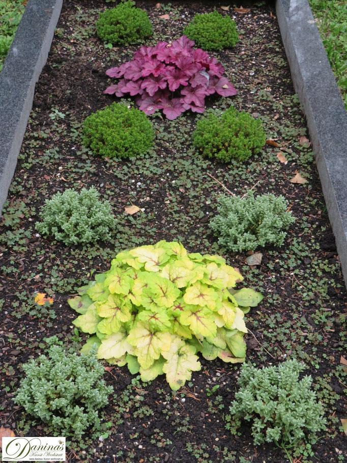 Pflegeleichte Grabbepflanzung im Herbst. Beispiel zum Selbermachen.