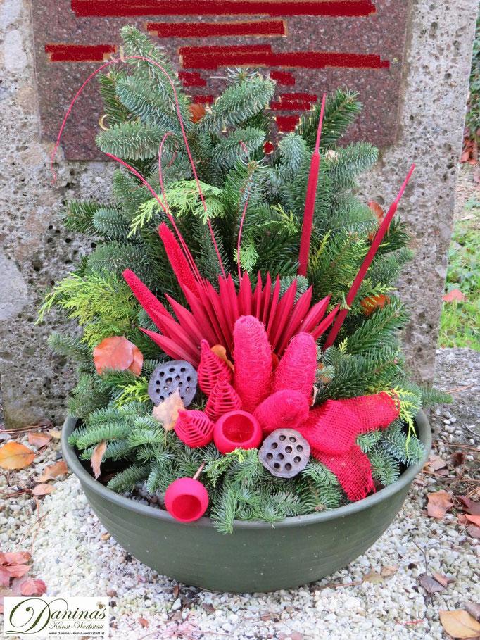 Allerheiligengesteck: Tannenzweige und rot gefärbte Zapfen