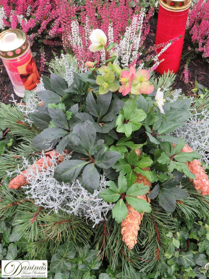 Grabgesteck mit Schneerose, Zapfen und Zweigen