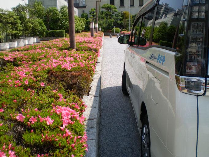 サツキと介護タクシー車両